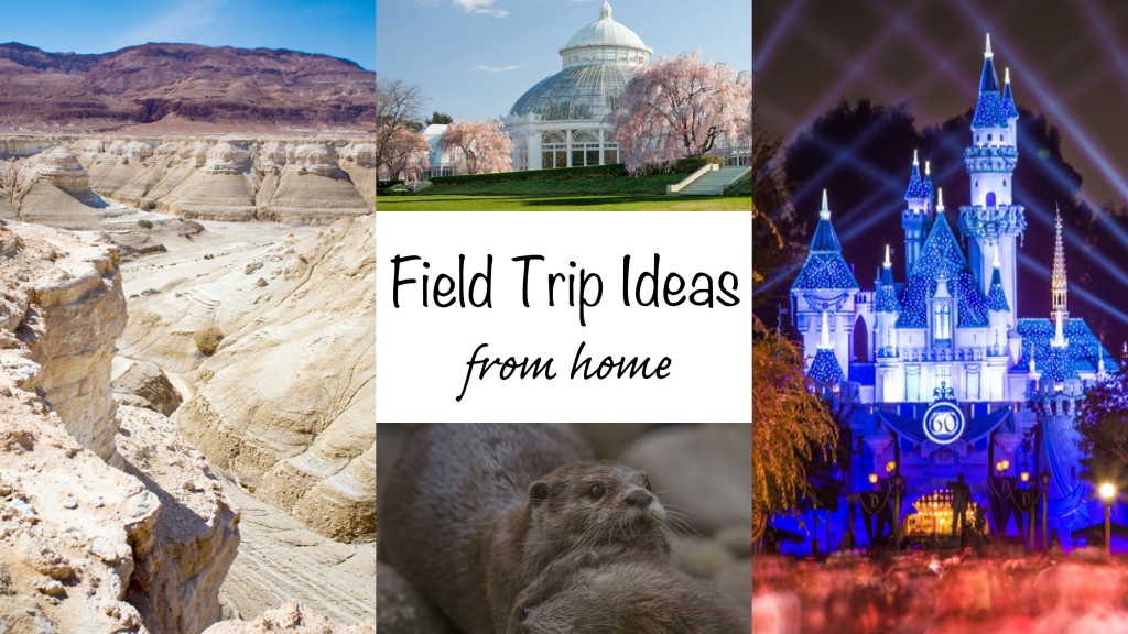 Field Trip Ideas From Home